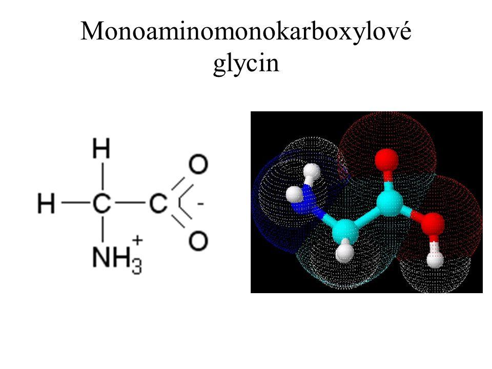 Rozdělení podle polarity uhlovodíkového zbytku Neutrální s nepolárním R – glycin, alanin, valin, leucin, isoleucin, prolin, fenylalanin, tryptofan, methionin Neutrální s polárním R – serin, threonin, cystein, tyrosin, asparagin, glutamin Polární se záporným nábojem (kyselé) – k..