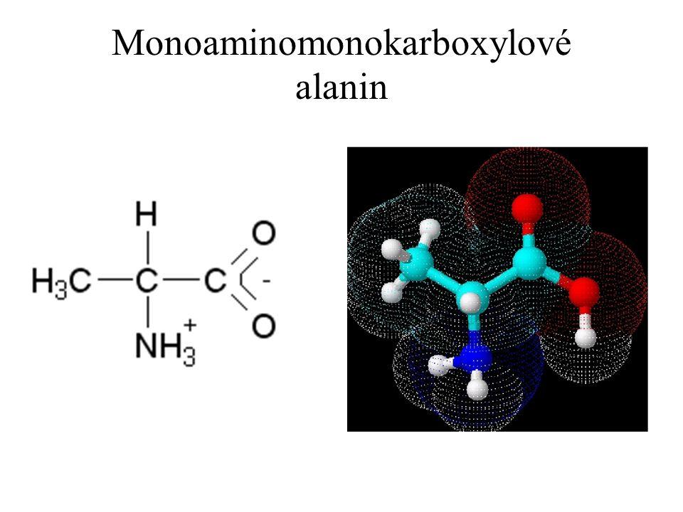 Monoaminomonokarboxylové alanin