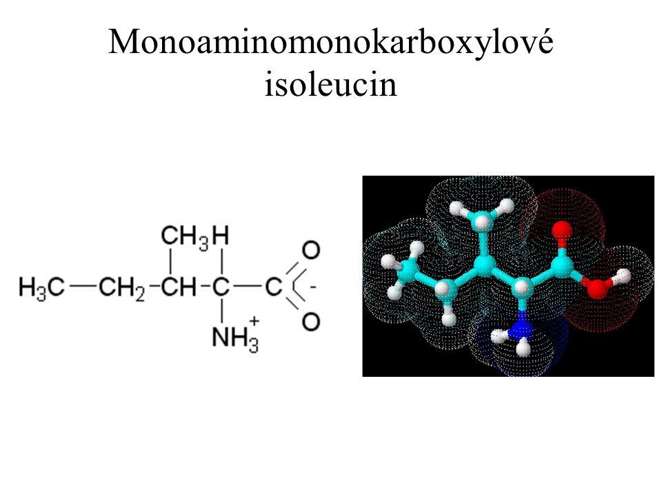 Monoaminomonokarboxylové isoleucin
