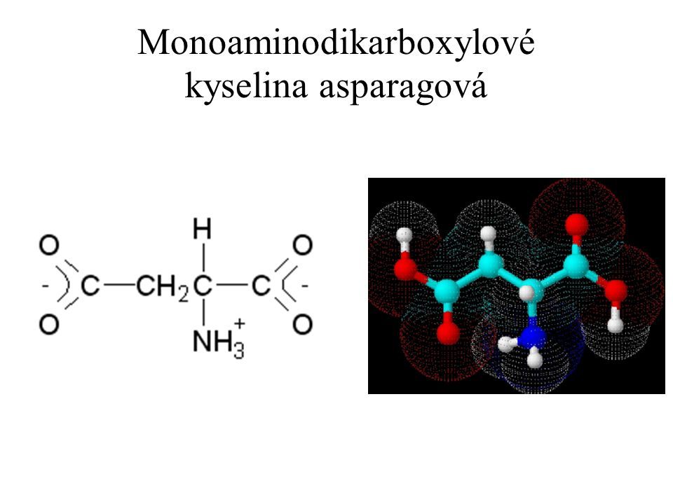 Monoaminodikarboxylové kyselina asparagová