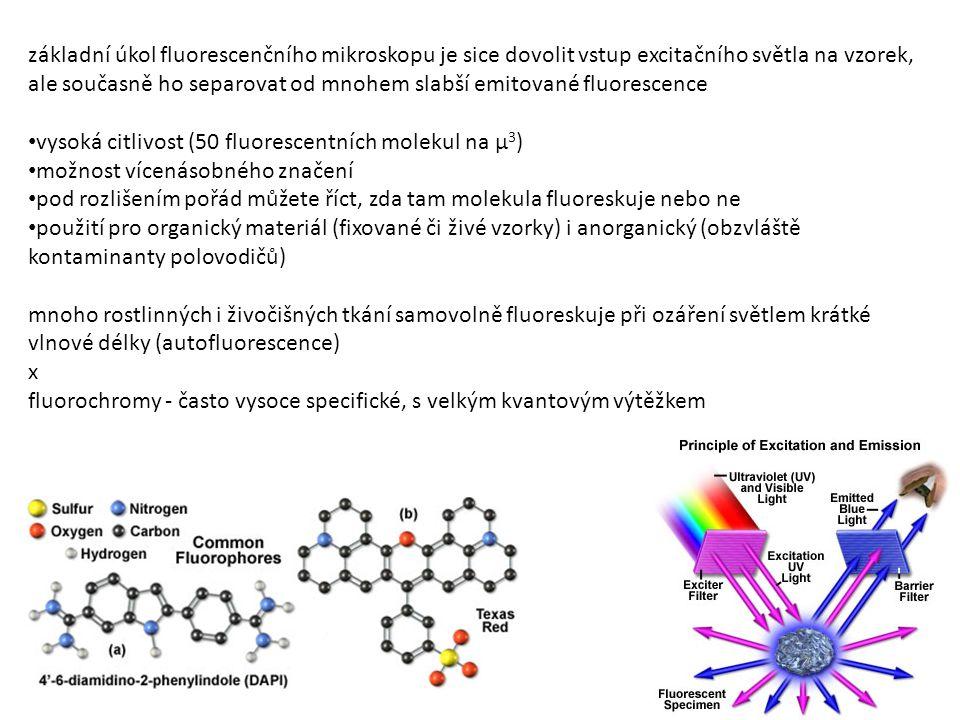 základní úkol fluorescenčního mikroskopu je sice dovolit vstup excitačního světla na vzorek, ale současně ho separovat od mnohem slabší emitované fluorescence vysoká citlivost (50 fluorescentních molekul na μ 3 ) možnost vícenásobného značení pod rozlišením pořád můžete říct, zda tam molekula fluoreskuje nebo ne použití pro organický materiál (fixované či živé vzorky) i anorganický (obzvláště kontaminanty polovodičů) mnoho rostlinných i živočišných tkání samovolně fluoreskuje při ozáření světlem krátké vlnové délky (autofluorescence) x fluorochromy - často vysoce specifické, s velkým kvantovým výtěžkem