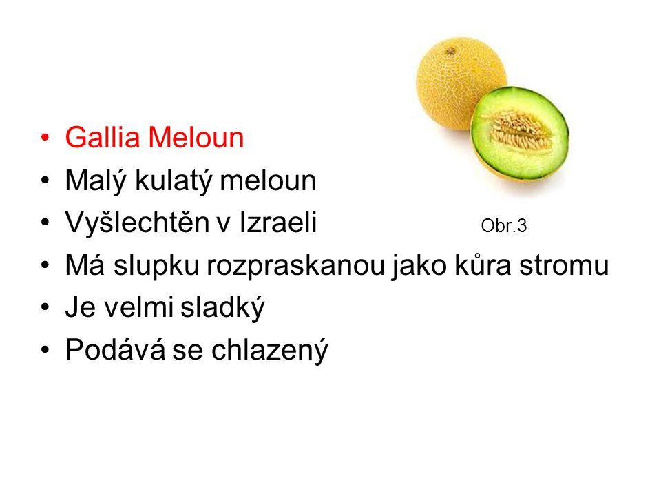 Gallia Meloun Malý kulatý meloun Vyšlechtěn v Izraeli Obr.3 Má slupku rozpraskanou jako kůra stromu Je velmi sladký Podává se chlazený