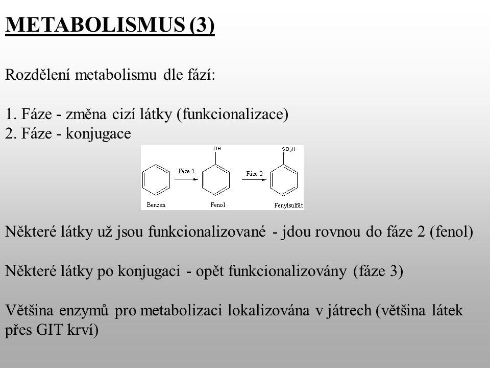 METABOLISMUS (3) Rozdělení metabolismu dle fází: 1.