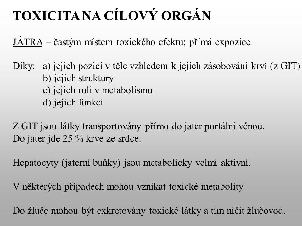 TOXICITA NA CÍLOVÝ ORGÁN JÁTRA – častým místem toxického efektu; přímá expozice Díky:a) jejich pozici v těle vzhledem k jejich zásobování krví (z GIT) b) jejich struktury c) jejich roli v metabolismu d) jejich funkci Z GIT jsou látky transportovány přímo do jater portální vénou.