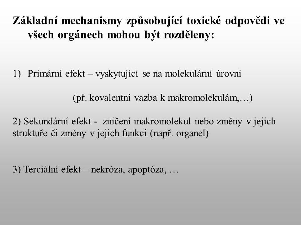 Základní mechanismy způsobující toxické odpovědi ve všech orgánech mohou být rozděleny: 1)Primární efekt – vyskytující se na molekulární úrovni (př.