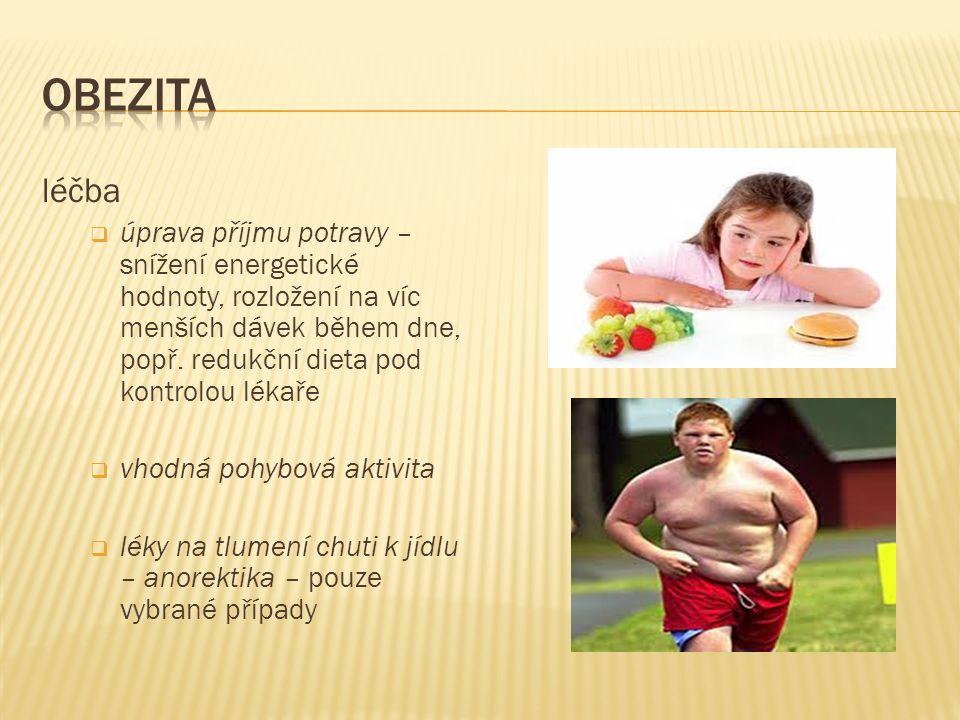 léčba  úprava příjmu potravy – snížení energetické hodnoty, rozložení na víc menších dávek během dne, popř. redukční dieta pod kontrolou lékaře  vho