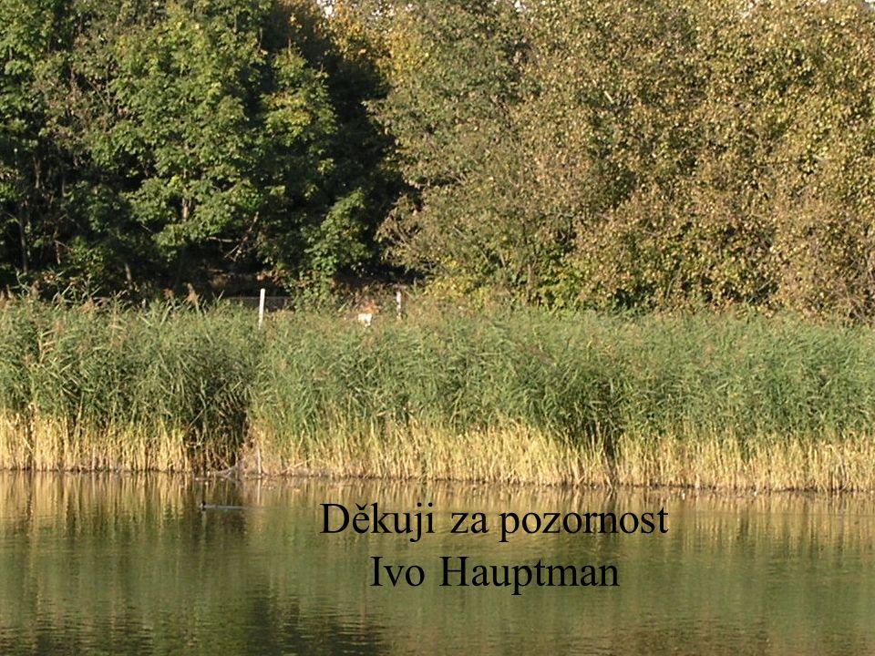 Děkuji za pozornost Ivo Hauptman