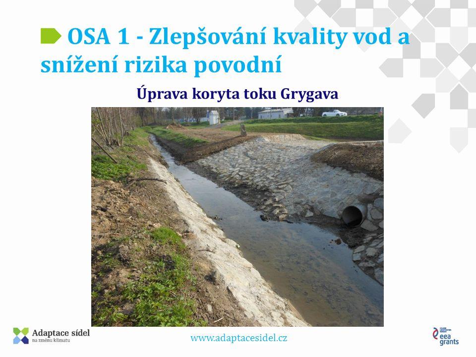 www.adaptacesidel.cz OSA 1 - Zlepšování kvality vod a snížení rizika povodní Podporované aktivity – cíl 4 Preventivní protipovodňová opatření: - Analýza odtokových poměrů včetně návrhů možných protipovodňových opatření.