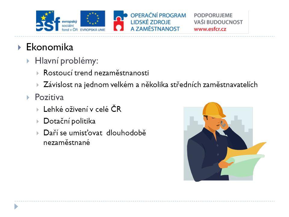  Ekonomika  Hlavní problémy:  Rostoucí trend nezaměstnanosti  Závislost na jednom velkém a několika středních zaměstnavatelích  Pozitiva  Lehké oživení v celé ČR  Dotační politika  Daří se umisťovat dlouhodobě nezaměstnané
