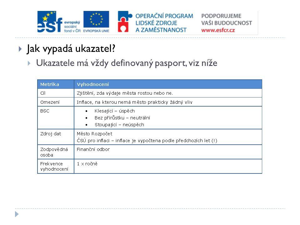  Jak vypadá ukazatel  Ukazatele má vždy definovaný pasport, viz níže