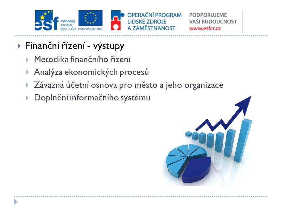  Finanční řízení - výstupy  Metodika finančního řízení  Analýza ekonomických procesů  Závazná účetní osnova pro město a jeho organizace  Doplnění informačního systému