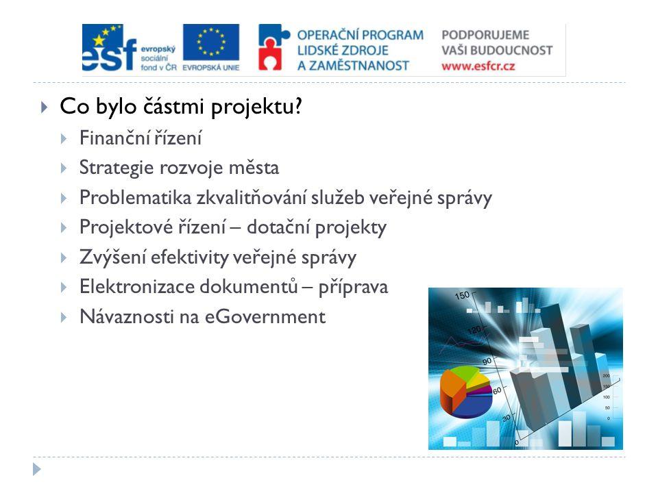 Česká republika  Demografické aspekty  Podpora rodiny  Zlepšování podmínek pro zdravý život  Podpora podnikání  Udržitelný rozvoj venkova  Systém vícezdrojového financování obcí a krajů