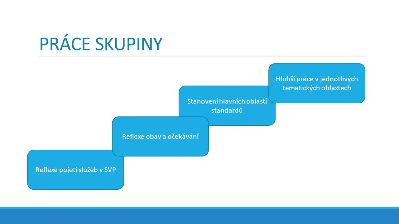 PRÁCE SKUPINY Reflexe pojetí služeb v SVP Stanovení hlavních oblastí standardů Hlubší práce v jednotlivých tematických oblastech Reflexe obav a očekávání
