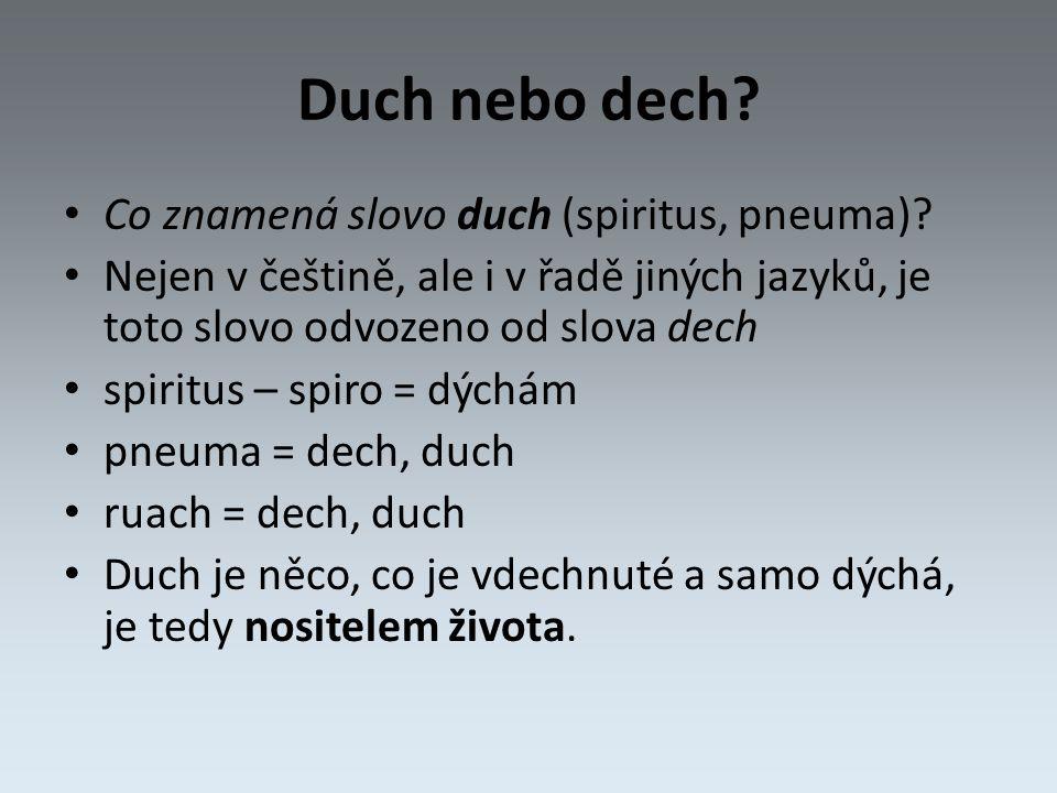Duch nebo dech. Co znamená slovo duch (spiritus, pneuma).