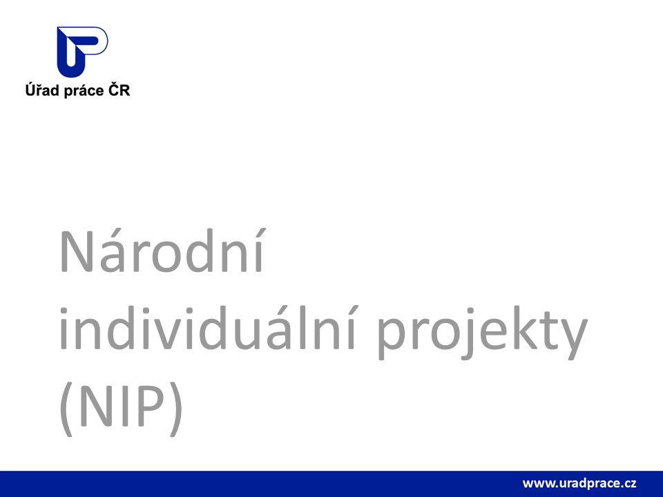 Národní individuální projekty (NIP)