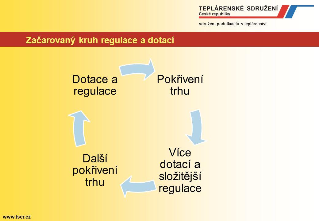 sdružení podnikatelů v teplárenství www.tscr.cz Očekávané náklady na podporu v roce 2013 Zdroj: ERÚ