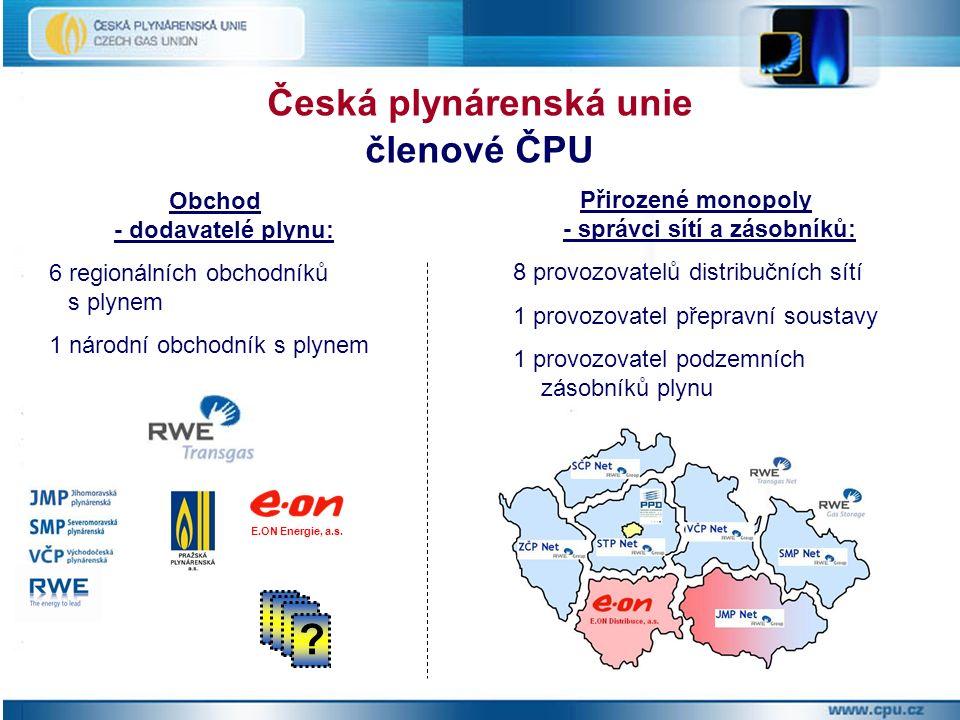 Přirozené monopoly - správci sítí a zásobníků: 8 provozovatelů distribučních sítí 1 provozovatel přepravní soustavy 1 provozovatel podzemních zásobníků plynu Česká plynárenská unie členové ČPU Obchod - dodavatelé plynu: 6 regionálních obchodníků s plynem 1 národní obchodník s plynem .