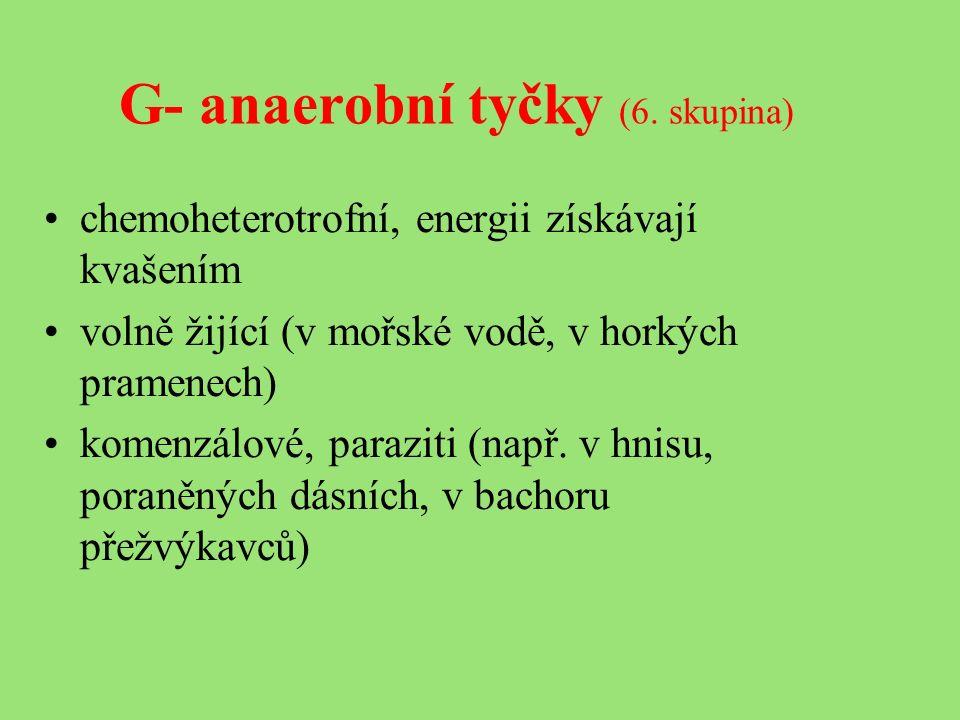 G- anaerobní tyčky (6.