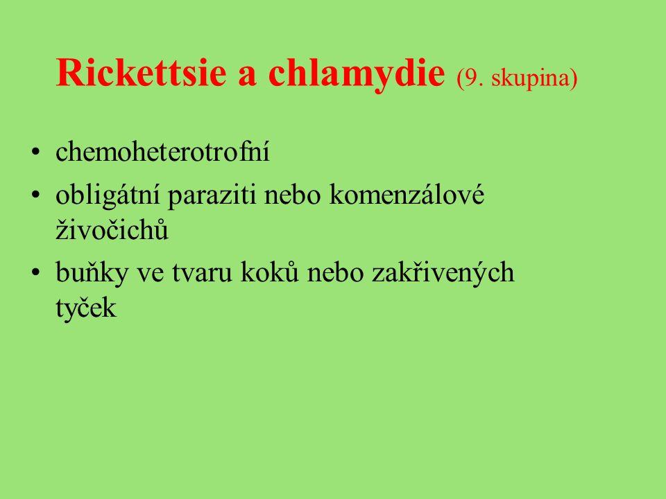 Rickettsie a chlamydie (9.