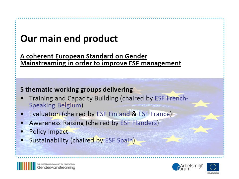 Our main end product A coherent European Standard on Gender Mainstreaming in order to improve ESF management 5 thematic working groups delivering: Training and Capacity Building (chaired by ESF French- Speaking Belgium) Evaluation (chaired by ESF Finland & ESF France) Awareness Raising (chaired by ESF Flanders) Policy Impact Sustainability (chaired by ESF Spain)
