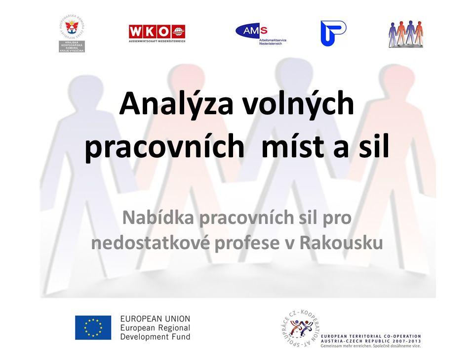 Analýza volných pracovních míst a sil Nabídka pracovních sil pro nedostatkové profese v Rakousku