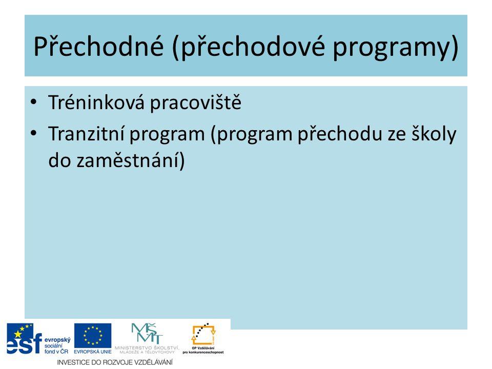 Přechodné (přechodové programy) Tréninková pracoviště Tranzitní program (program přechodu ze školy do zaměstnání)