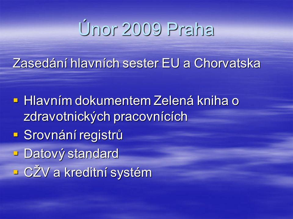 Únor 2009 Praha Zasedání hlavních sester EU a Chorvatska  Hlavním dokumentem Zelená kniha o zdravotnických pracovnících  Srovnání registrů  Datový standard  CŽV a kreditní systém