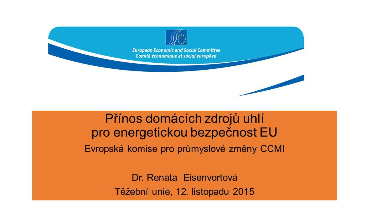 Přínos domácích zdrojů uhlí pro energetickou bezpečnost EU Evropská komise pro průmyslové změny CCMI Dr. Renata Eisenvortová Těžební unie, 12. listopa