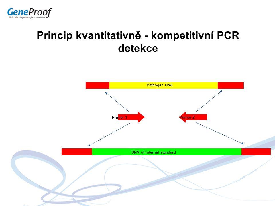 Princip kvantitativně - kompetitivní PCR detekce Pathogen DNA DNA of internal standard Primer 1Primer 2