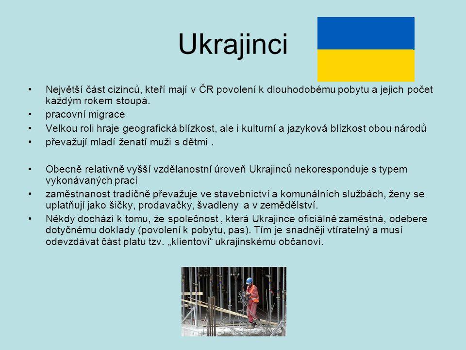Ukrajinci Největší část cizinců, kteří mají v ČR povolení k dlouhodobému pobytu a jejich počet každým rokem stoupá. pracovní migrace Velkou roli hraje