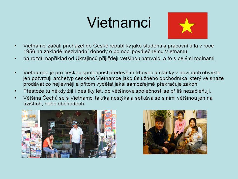 Vietnamci Vietnamci začali přicházet do České republiky jako studenti a pracovní síla v roce 1956 na základě mezivládní dohody o pomoci poválečnému Vietnamu na rozdíl například od Ukrajinců přijíždějí většinou natrvalo, a to s celými rodinami.