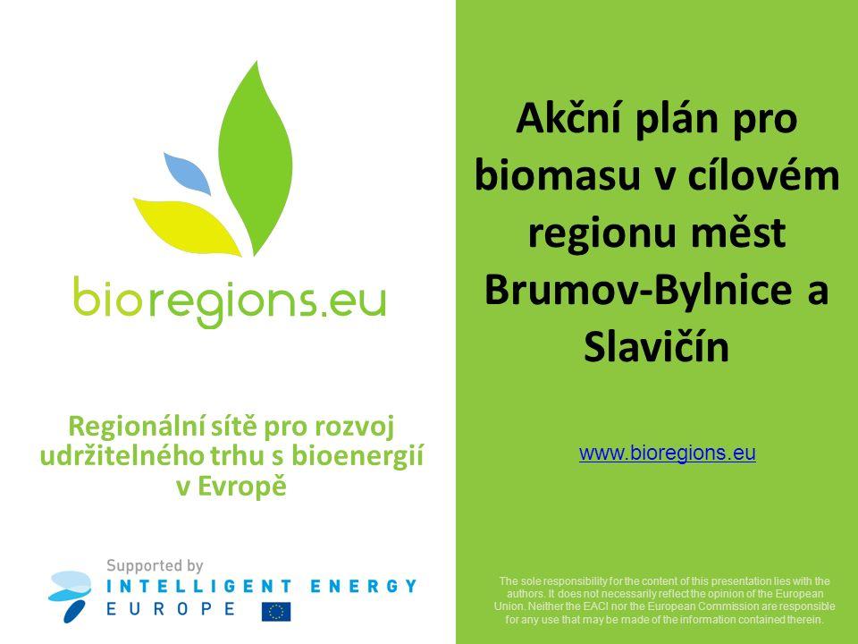 """Projekt BioRegions Mezinárodní projekt BioRegions podporuje vytváření """"bioenergetických regionů ve venkovských oblastech Evropy."""