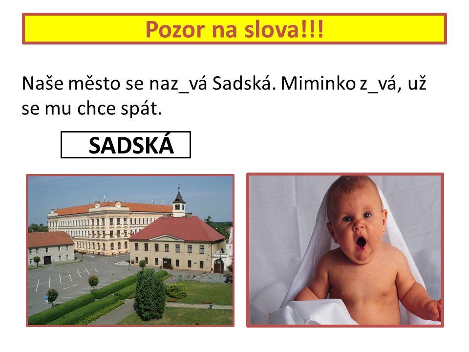 Pozor na slova!!! Naše město se naz_vá Sadská. Miminko z_vá, už se mu chce spát. SSADSKÁ