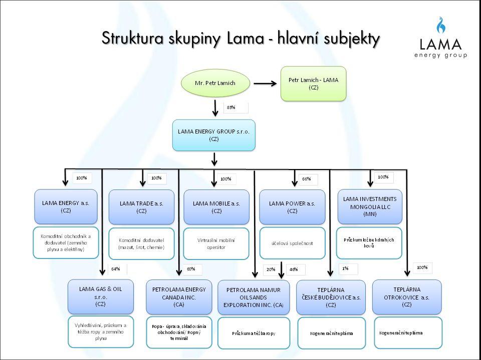 Struktura skupiny Lama - hlavní subjekty