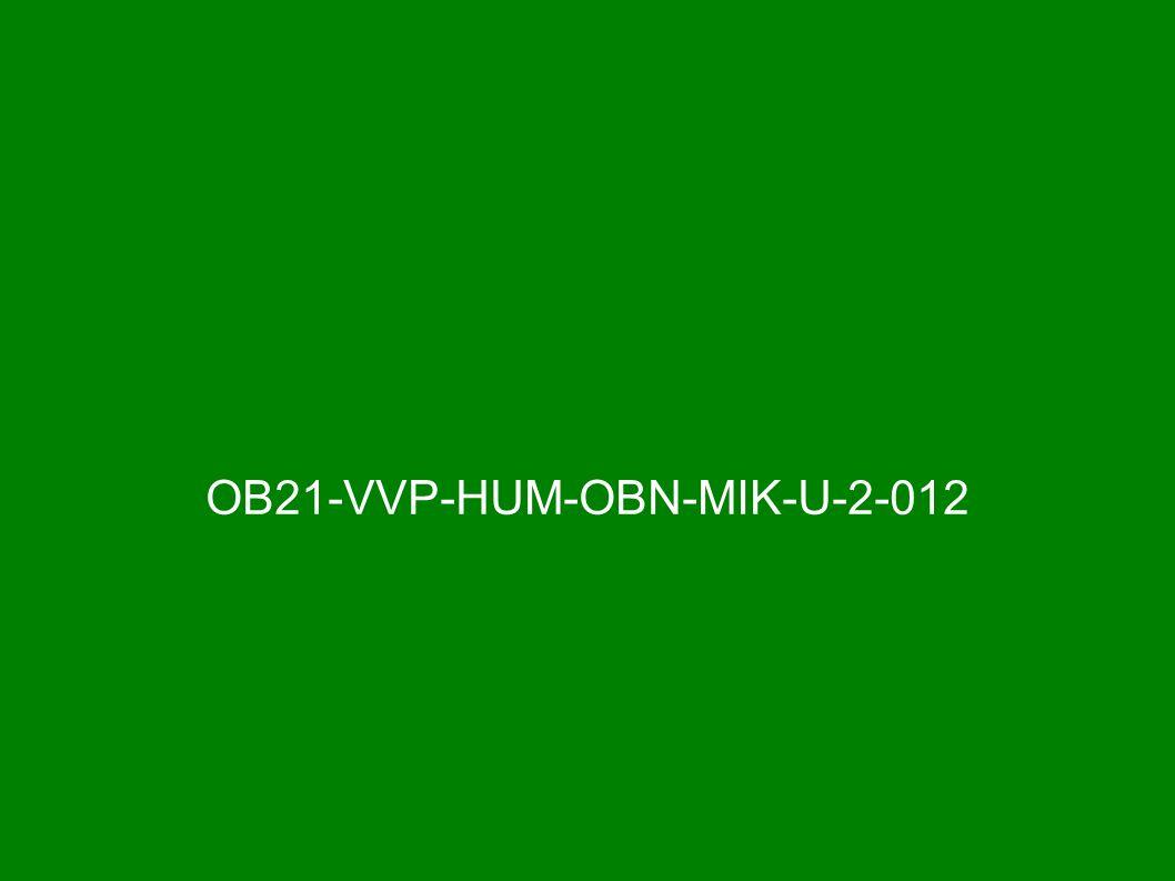 OB21-VVP-HUM-OBN-MIK-U-2-012