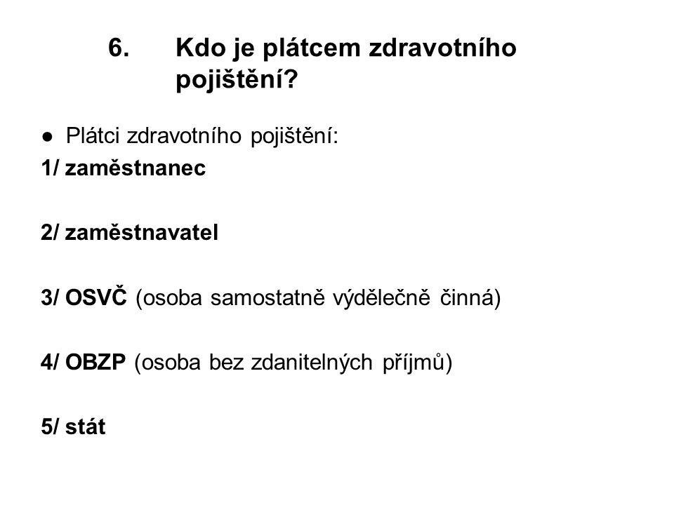 6.Kdo je plátcem zdravotního pojištění.