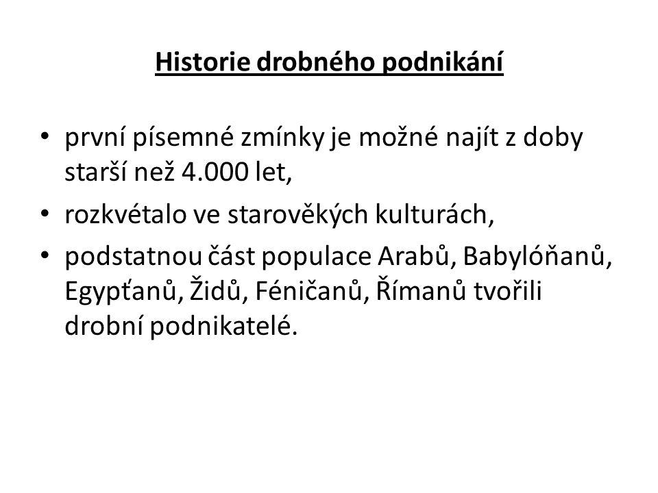 Historie drobného podnikání první písemné zmínky je možné najít z doby starší než 4.000 let, rozkvétalo ve starověkých kulturách, podstatnou část populace Arabů, Babylóňanů, Egypťanů, Židů, Féničanů, Římanů tvořili drobní podnikatelé.