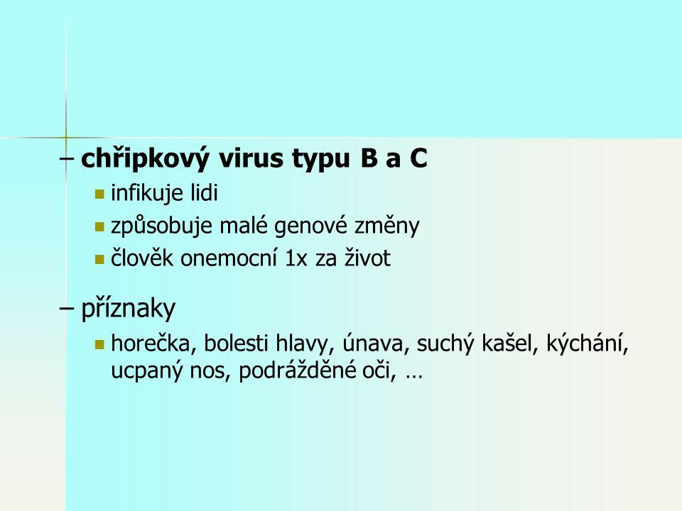 – –chřipkový virus typu B a C infikuje lidi způsobuje malé genové změny člověk onemocní 1x za život – –příznaky horečka, bolesti hlavy, únava, suchý kašel, kýchání, ucpaný nos, podrážděné oči, …