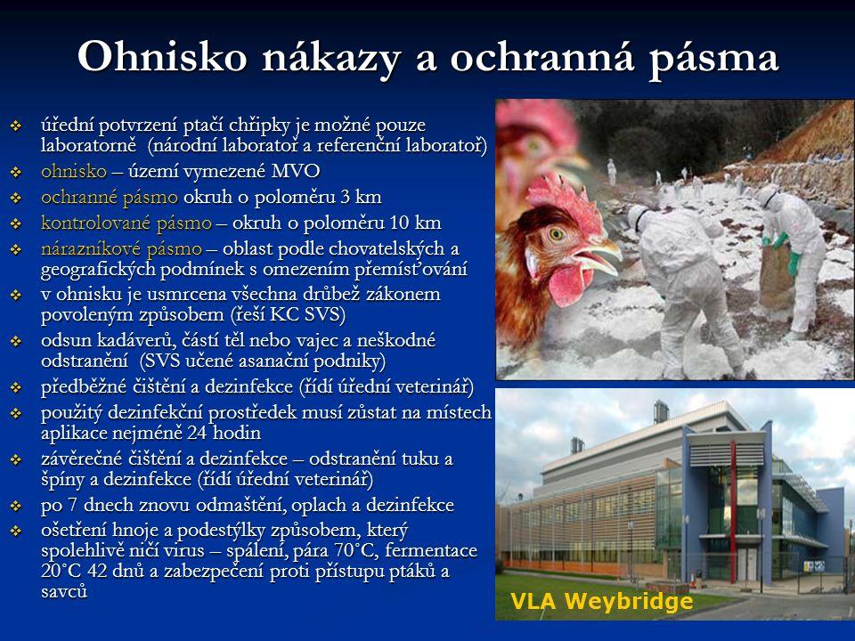 Ohnisko nákazy a ochranná pásma  úřední potvrzení ptačí chřipky je možné pouze laboratorně (národní laboratoř a referenční laboratoř)  ohnisko – území vymezené MVO  ochranné pásmo okruh o poloměru 3 km  kontrolované pásmo – okruh o poloměru 10 km  nárazníkové pásmo – oblast podle chovatelských a geografických podmínek s omezením přemísťování  v ohnisku je usmrcena všechna drůbež zákonem povoleným způsobem (řeší KC SVS)  odsun kadáverů, částí těl nebo vajec a neškodné odstranění (SVS učené asanační podniky)  předběžné čištění a dezinfekce (řídí úřední veterinář)  použitý dezinfekční prostředek musí zůstat na místech aplikace nejméně 24 hodin  závěrečné čištění a dezinfekce – odstranění tuku a špíny a dezinfekce (řídí úřední veterinář)  po 7 dnech znovu odmaštění, oplach a dezinfekce  ošetření hnoje a podestýlky způsobem, který spolehlivě ničí virus – spálení, pára 70˚C, fermentace 20˚C 42 dnů a zabezpečení proti přístupu ptáků a savců VLA Weybridge