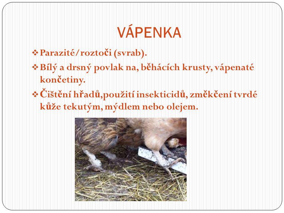 VÁPENKA  Parazité/rozto č i (svrab).