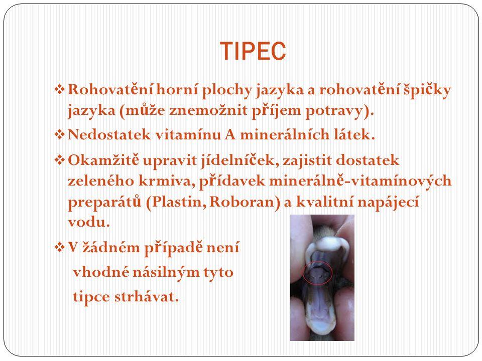TIPEC  Rohovat ě ní horní plochy jazyka a rohovat ě ní špi č ky jazyka (m ů že znemožnit p ř íjem potravy).