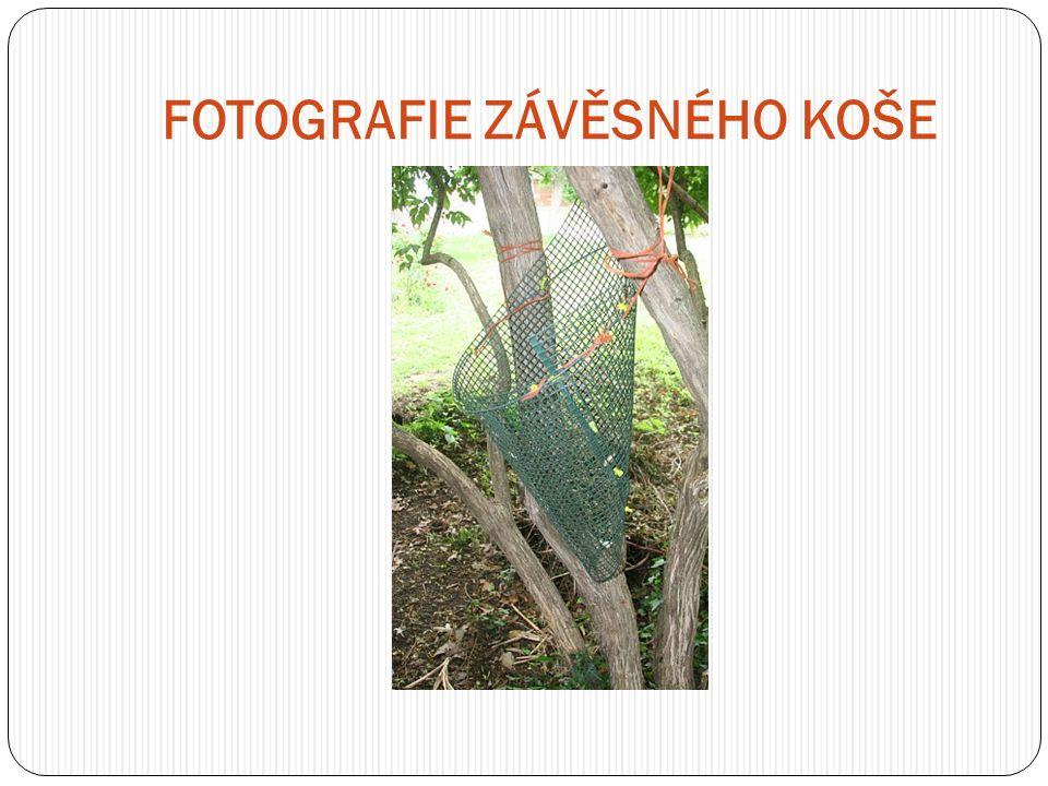 FOTOGRAFIE ZÁVĚSNÉHO KOŠE