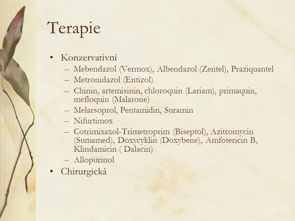 Terapie Konzervativní –Mebendazol (Vermox), Albendazol (Zentel), Praziquantel –Metronidazol (Entizol) –Chinin, artemisinin, chloroquin (Lariam), prima