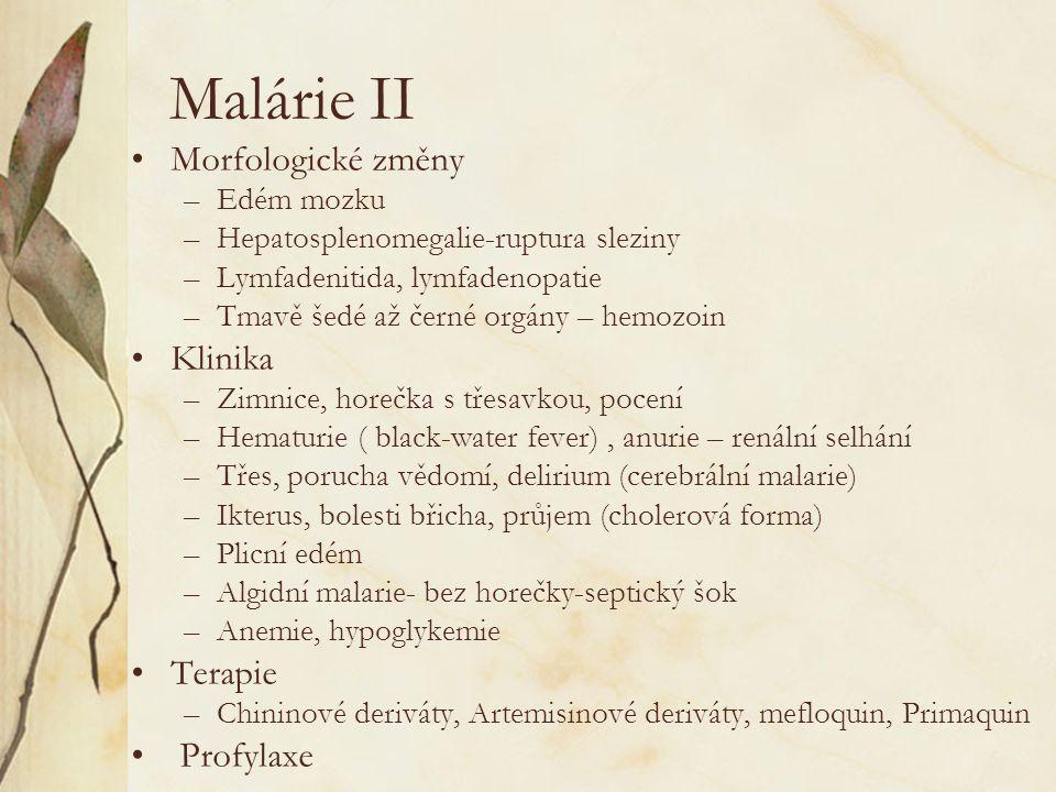 Malárie II Morfologické změny –Edém mozku –Hepatosplenomegalie-ruptura sleziny –Lymfadenitida, lymfadenopatie –Tmavě šedé až černé orgány – hemozoin K