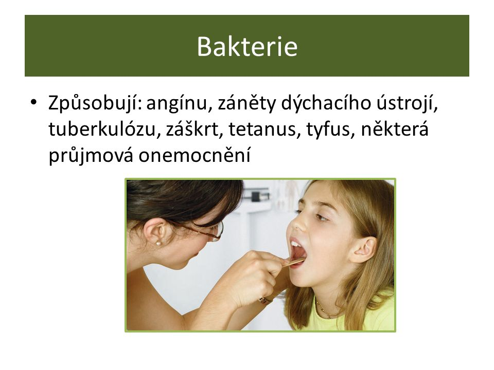 Bakterie Způsobují: angínu, záněty dýchacího ústrojí, tuberkulózu, záškrt, tetanus, tyfus, některá průjmová onemocnění