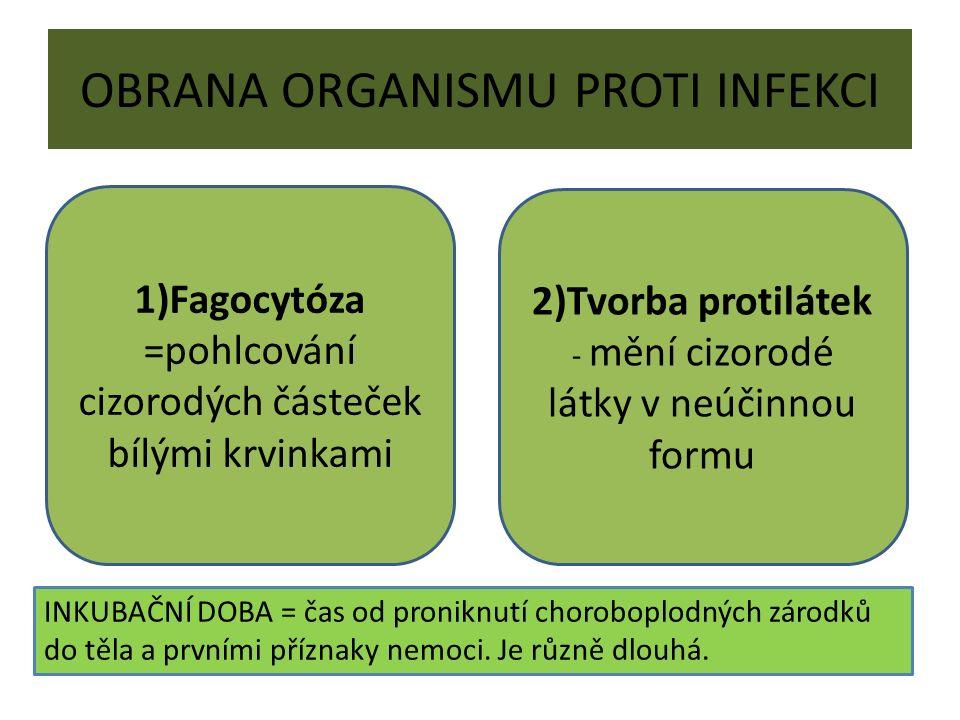 OBRANA ORGANISMU PROTI INFEKCI 1)Fagocytóza =pohlcování cizorodých částeček bílými krvinkami 2)Tvorba protilátek - mění cizorodé látky v neúčinnou for