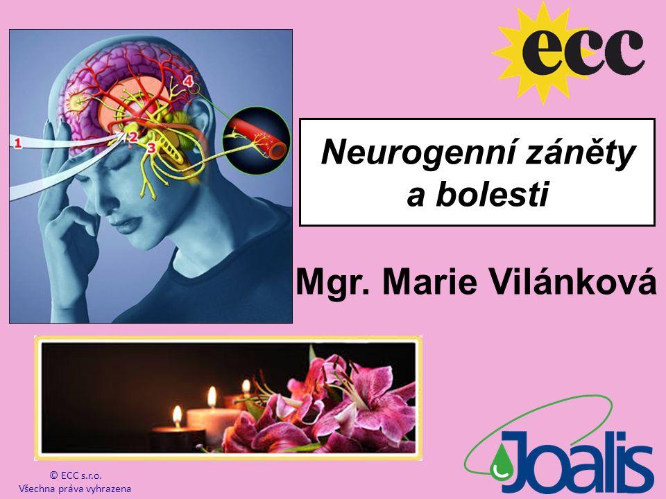 Mgr. Marie Vilánková © ECC s.r.o. Všechna práva vyhrazena Neurogenní záněty a bolesti