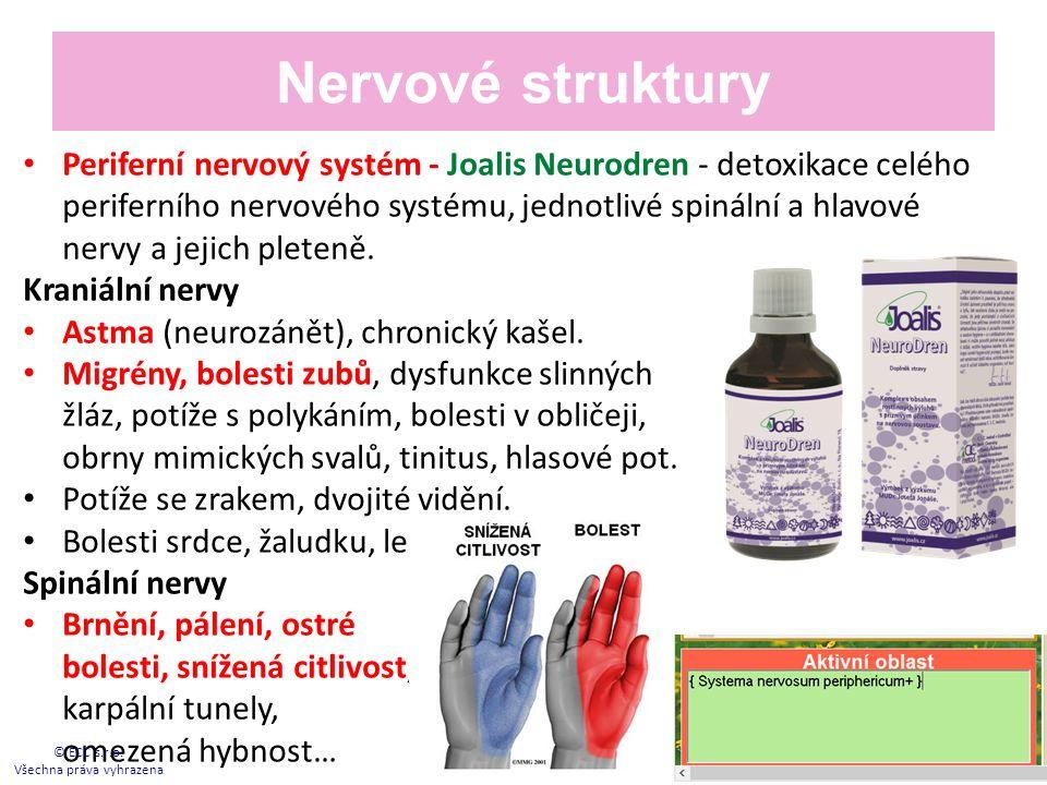 Nervové struktury Periferní nervový systém - Joalis Neurodren - detoxikace celého periferního nervového systému, jednotlivé spinální a hlavové nervy a jejich pleteně.
