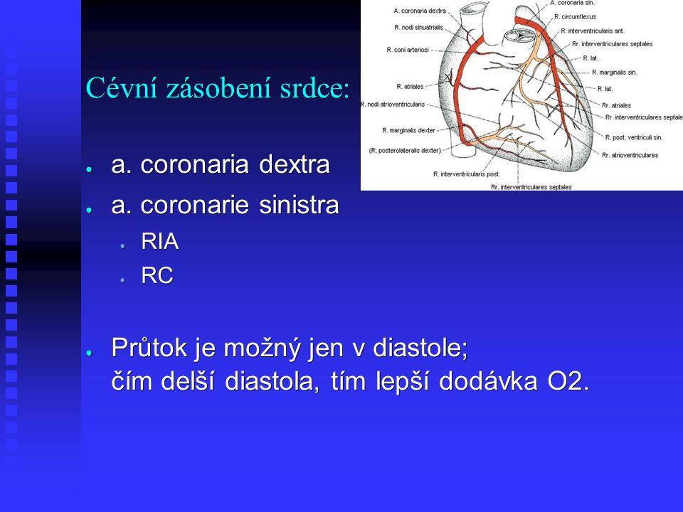 Cévní zásobení srdce: ● a. coronaria dextra ● a.