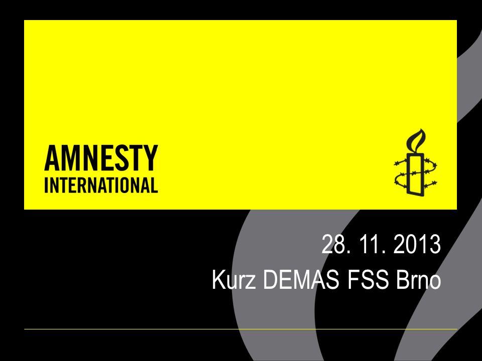 28. 11. 2013 Kurz DEMAS FSS Brno